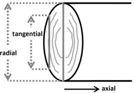 Laubschnittholz Kammergetrocknet Wecobis ökologisches